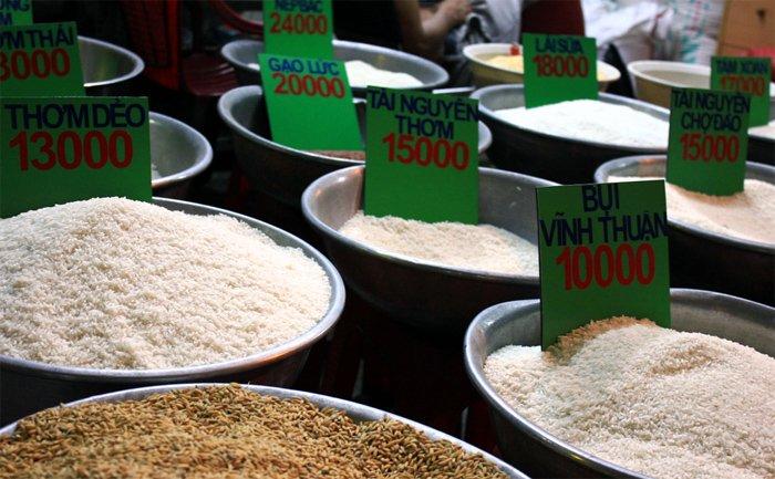 Việt Nam đến giờ vẫn chưa chọn được giống lúa nào để xây dựng thương hiệu gạo quốc gia