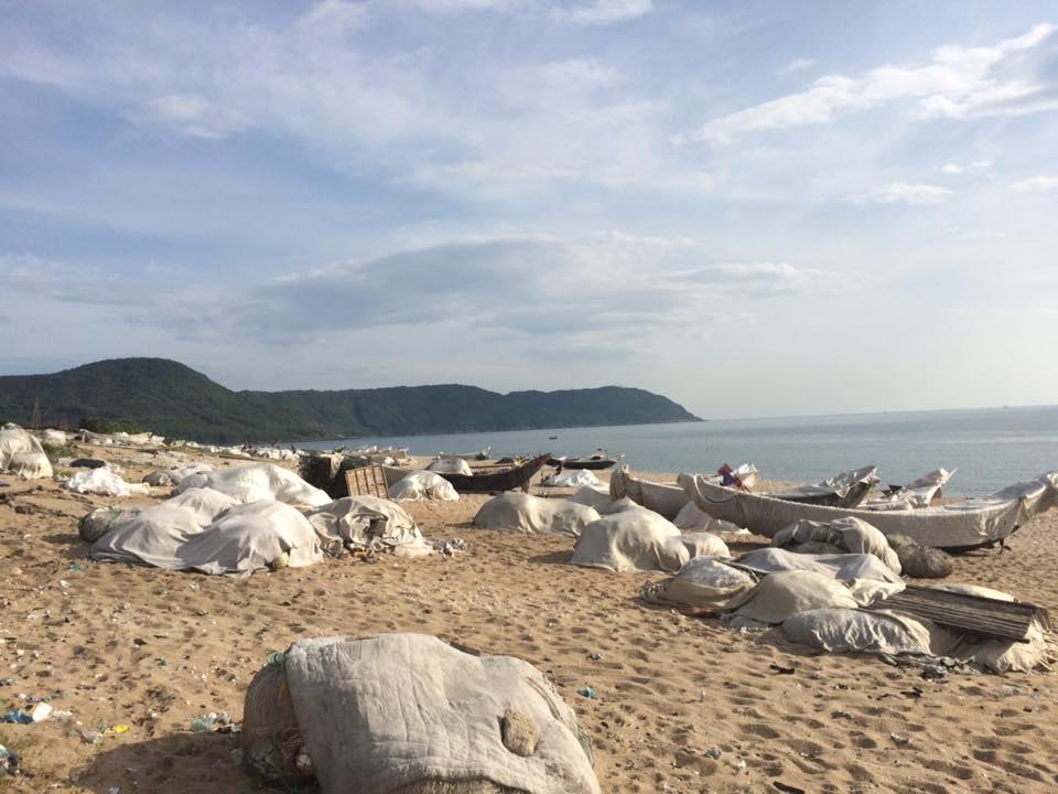 Vùng biển chết?