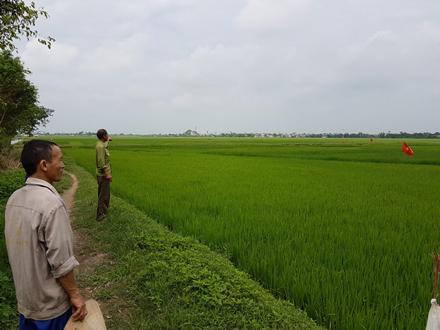 """Mập mờ dự án """"bán"""" 30ha đất nông nghiệp cho doanh nghiệp Trung Quốc."""