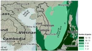Hình 3: phân bố (năm 2015) và mức độ đa dạng thành phần loài (năm 2003) của hệ sinh thái cỏ biển ở  Việt Nam (Nguồn: UNEP) [6]