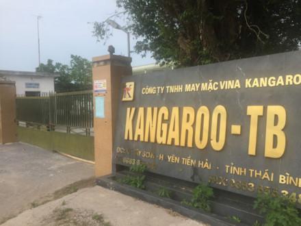 Trụ sở Cty Kangaroo tại huyện Tiền Hải.