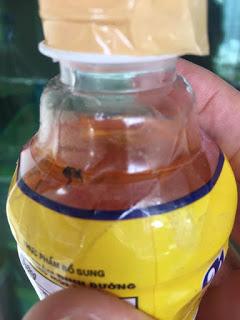 Bỏ một con ruồi vào chai Number One của Tân Hiệp Phát, con ruồi nguyên vẹn từ tháng 10/2016 đến tháng 06/2017, nghĩa là sau gần 8 tháng, cho thấy sự tồn tại chắc chắn của chất bảo quản. Thí nghiệm và ảnh được thực hiện bởi Hoàng Dũng.
