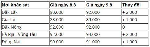 Bảng giá hồ tiêu hôm 08/09 (đơn vị tính: VND/kg; tham khảo)